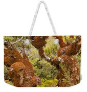 Mountain Beech Rain Forest In Fjordland Np Nz Weekender Tote Bag