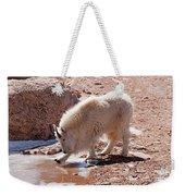 Mountain Goat Breaking Ice On Mount Evans Weekender Tote Bag
