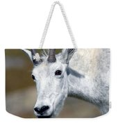 Mountain Goat Feeding Weekender Tote Bag