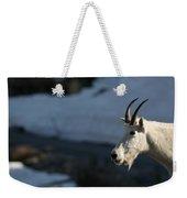 Mountain Goat Glacier National Park Weekender Tote Bag
