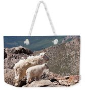 Mountain Goat Nanny And Kid Enloying The View On Mount Evans Weekender Tote Bag