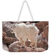 Mountain Goat On Mount Evans Weekender Tote Bag