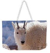 Mountain Goat Portrait On Mount Evans Weekender Tote Bag