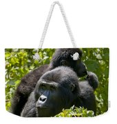 Mountain Gorilla With Infant  Weekender Tote Bag