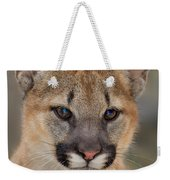 Mountain Lion Felis Concolor Captive Wildlife Rescue Weekender Tote Bag