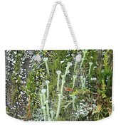 Mountain Moss Lichens And Fungi Weekender Tote Bag