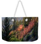 Mountain Side Colors Weekender Tote Bag