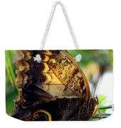 Mournful Owl Butterfly In Sunlight Weekender Tote Bag