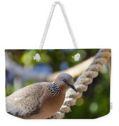 Mourning Dove Weekender Tote Bag
