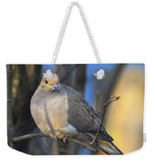 Mourning Dove On Limb Weekender Tote Bag