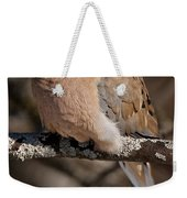 Mourning Dove Pictures 32 Weekender Tote Bag