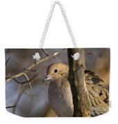 Mourning Dove Pictures 39 Weekender Tote Bag