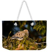 Mourning Dove Pictures 64 Weekender Tote Bag