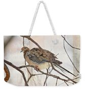 Mourning Dove - Sing No Sad Song For Me #2 Weekender Tote Bag