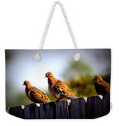 Mourning Doves On Fence Weekender Tote Bag