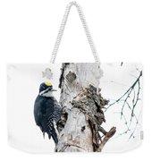 Mr. Black-bscked Woodpecker Weekender Tote Bag