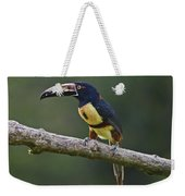 Mr. Colorful.. Weekender Tote Bag