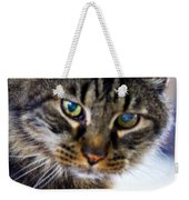 Mr. Lynx - Tabby - Cat Weekender Tote Bag