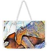 Mr. Tortoise Vertical Triptych Weekender Tote Bag