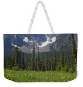 1m3613-mt. Patterson And The Snowbird Glacier Weekender Tote Bag