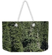 Mt Washington Behind Clear Lake Weekender Tote Bag