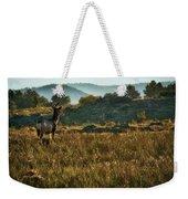 Mule Deer At De Weese Reservoir Weekender Tote Bag