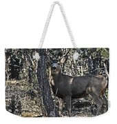 Mule Deer Buck Weekender Tote Bag