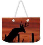 Mule Deer Buck Jumping Fence At Sunset Weekender Tote Bag