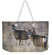 Mule Deer Does Weekender Tote Bag