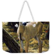 Mule Deer Fawn - Monarch Moment Weekender Tote Bag by Crista Forest