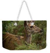 Mule Deer On Alert Weekender Tote Bag
