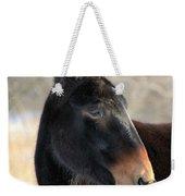 Mule Portrait 2 Weekender Tote Bag