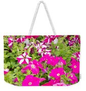 Multi-colored Blooming Petunias Background Weekender Tote Bag