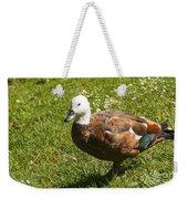 Multi-colored Paridise Duck Weekender Tote Bag