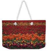 Multi-colored Tulip Fields  Weekender Tote Bag