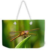 Multicolored Dragonfly Weekender Tote Bag