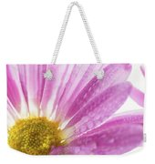 Mums Flowers Against A White Background Weekender Tote Bag