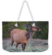 Munching Elk Grand Teton National Park Weekender Tote Bag