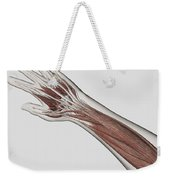 Muscle Anatomy Of Human Arm And Hand Weekender Tote Bag