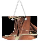 Muscles Of The Upper Chest And Neck Weekender Tote Bag