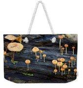 Mushrooms Amazon Jungle Brazil 4 Weekender Tote Bag