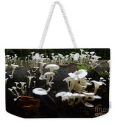 Mushrooms Amazon Jungle Brazil 5 Weekender Tote Bag