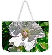 Musk Mallow Along Trail To Cap Gaspe In Forillon National Park-quebec  Weekender Tote Bag