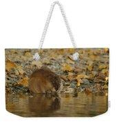 Muskrat Reflection Weekender Tote Bag