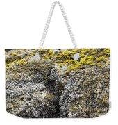 Mussels Barnacles Seaweed Closeup Weekender Tote Bag