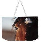 Mustang Battle Wounds Weekender Tote Bag