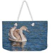 Mute Swan Cygnet Weekender Tote Bag