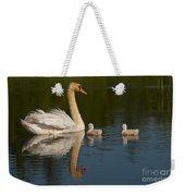 Mute Swan Pictures 244 Weekender Tote Bag