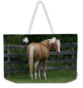 My Dream Horse Weekender Tote Bag