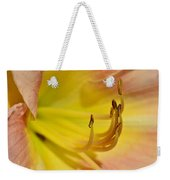 My Name Is Lily Weekender Tote Bag